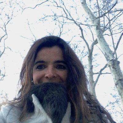 Caldas de Moledo – um parque parado e fechado!?