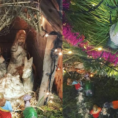 neste natal OFEREÇA NATUREZA!